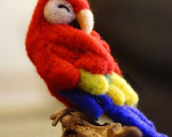 Sleeping Needle felted Red Macaw Parrot - felt parrot plush