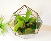 Glass Terrarium Glass Terrarium Modern Planter For Indoor Gardening Stained Glass Terrarium Triangular Orthobicupola Made To Order