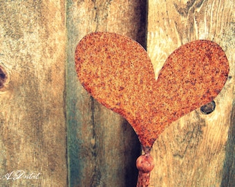 Photography Print Rusty Heart