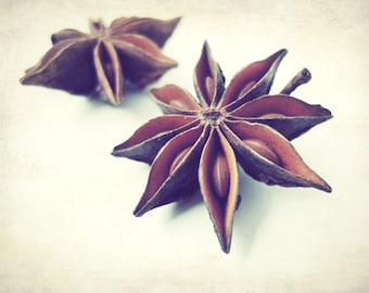 Food photography - fresh spices - cooking kitchen wall art - dining room decor - geometric brown neutral photograph 'Star Anise'
