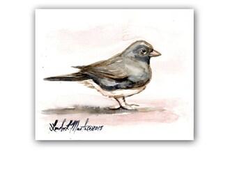 Snow Bird Art Original Junco Watercolor Painting  LLMartin  Virginia Country Free Shipping USA Santa's Song Bird
