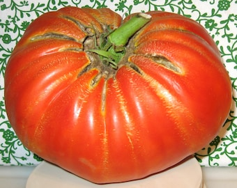 Delicious Heirloom Giant Tomato Seeds