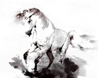 Mixed Media horse sketch, Horse print