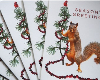 Squirrel Decorating Tree with Cranberry Garland Season's Greetings Cards - Set of 10, Squirrel Christmas Cards