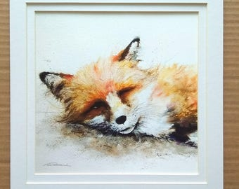 Snoozing Fox print mounted - Only one available