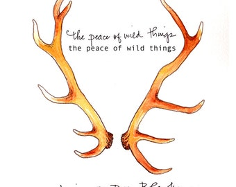 The Peace of Wild Things by Ariana D. Den Bleyker (poetry)