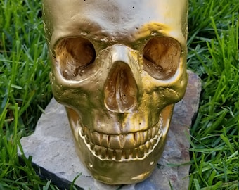 Realistic life size painted concrete skull - gold