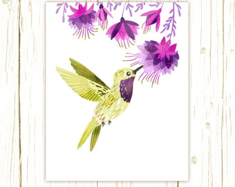 Lucifer Hummingbird Print -- bird art -- bird art 52 birds stephanie fizer coleman illustration fuschia