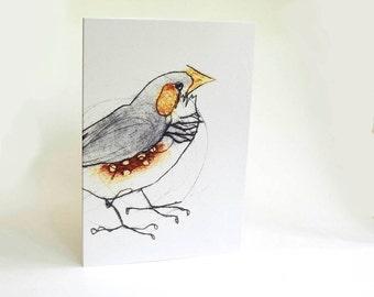 Finch Card, Greeting Card, Bird Art Card, Zebra Finch, Australian Bird, Bridget Farmer Cards
