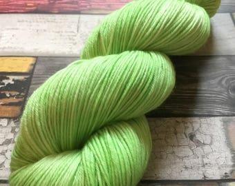 PISTACHIO  merino superwash nylon hand painted yarn dyed soft