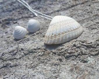 Seashell necklace with shell earrings