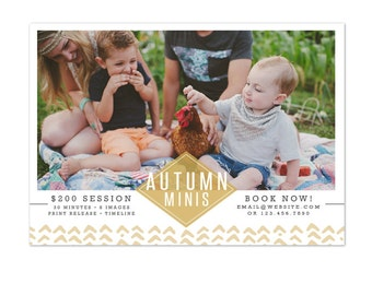 INSTANT DOWNLOAD - Fall Mini Session template - Photoshop template - E1093