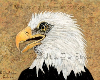 NOTE CARD, Eagle, bird decor, note cards, Ellen Strope, home decor,bird cards, wildlife, birds, bird art
