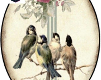 1 cabochon clear 18mm x 13mm vintage birds theme