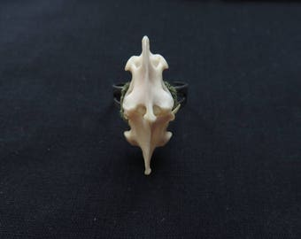 Small Animal Bone Ring