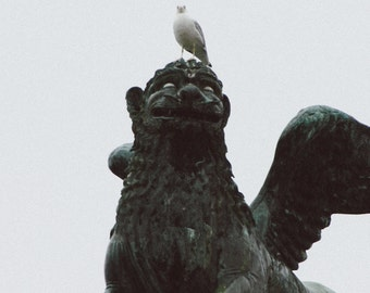 Lion of Venice Statue and Seagull Italy Travel Photography Print - Lion & Bird - Venice Photography, Italy Print, Venice Italy, Travel Photo