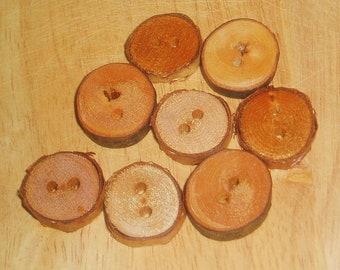 8 NH Tree Branch Buttons//Cherry Tree//Birch Tree//2 Holes