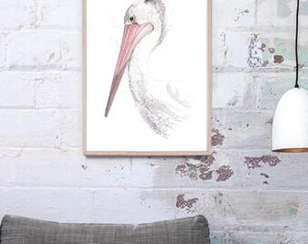 NEW Australian Pelican Giclee Art Print A3, A2 & A1 Watercolour Bird Painting