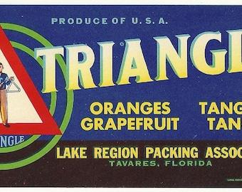 Triangle Brand Citrus Fruit Crate Label Lake Region Packing Co. Tavares, Florida