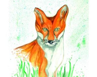 Limted edition fox print.