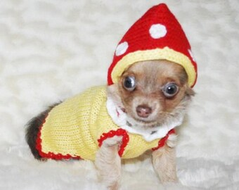 Small dog clothes dog costumes Mushroom Chihuahua clothes Chihuahua clothing xxxs xxs xs s m L xL pets puppy Yorkie sweater clothes for dogs & Pet Costumes | Etsy