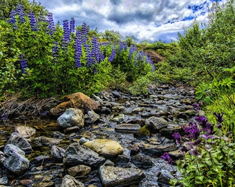 Art Print - Glymur Stream with Flowers, Landscape Photography - Wall Art, Nature Print, Home Decor, Art Photography, Print, Wall Picture