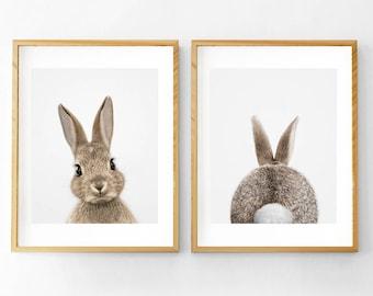 Rabbit Print, Rabbit Tail Print, Nursery Wall Art, Printable Nursery, Rabbit Wall Art, Kids Room Wall Art, Woodlands Nursery, Bunny Tail