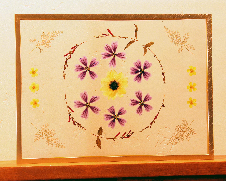 Pressed Flower Art Framed Dried Flowers Dried Flower Wall
