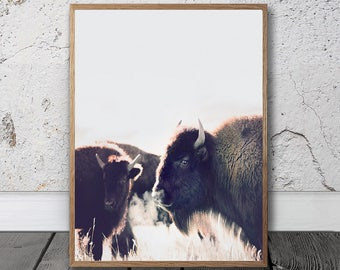 Bison Print - Printable Art, Buffalo Wall Art, American Bison Print, Digital Download, Southwestern Decor, Bohemian Art Print, Bison Photo