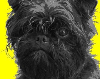 Cute Affenpinscher dog Paint By Numbers Kit