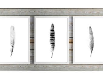 Black grey Feather Art - set of 3Prints - feather  watercolor paintings -  wall art - feather decor - feather prints - feathers poster