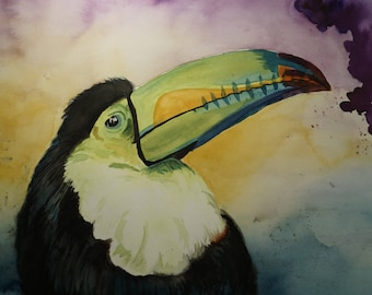 Original Watercolor Painting   Toucan Animal Bird Portrait Art