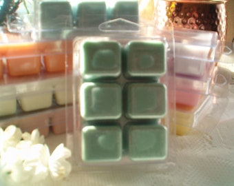 Baja Lime Wax Melts, Lime Soy Wax Melts, Soy Wax, Variety Scents, Best Selling Wax Melts, Unique scents, Fruity, Citrus