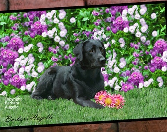 Black Lab Doormat, Black Lab Gift, Black Lab Floor Mat, Black Lab Art, Black Lab
