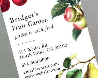 Fruit Business Card with Apple, Cherries, Pear - Set of 50