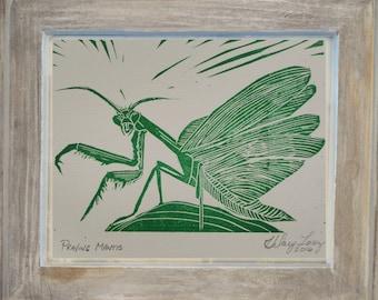 Praying Mantis, Linocut