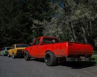 Datsun Colors, Landscape Photography, Metal Print, Large Prints, Humboldt County CA, Classic Cars, Redwoods, DJerniganPhoto