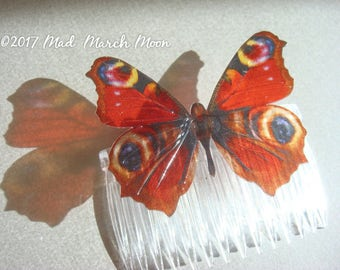 Peacock Butterfly Comb, transparent rich colour, handmade hair accessory single hair piece