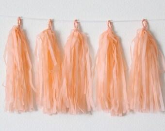 Tissue Paper Tassel Garland DIY KIT-Peach Party Decor-Country Fair Decorations-Peach Wedding Tassels-Tea party Garland-Peach Balloon Tassel