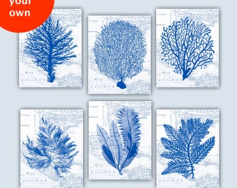 Coral Sea Fan art, Nautical poster, Sea fan posters, nursery art, educational display, bathroom decor, beach cottage decor, coastal art