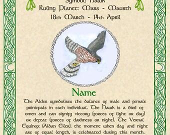 Celtic Zodiac Signs Druid Tree Lore Lunar Astrology Fine Art Print 11x14 Dec to April Birthday Gift Stag Dragon Seahorse Hawk Pagan Altar