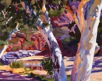 Oase in der Wüste... Ormiston Schlucht zentral-Australien.