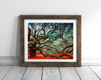 Charleston SC Tree Print South Carolina Charleston Art Nature Photography Extra Large Wall Art Live Oak Angel Oak Tree