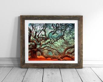 24x36 Art Prints Charleston SC Tree Print South Carolina Charleston Art Nature Photography Extra Large Wall Art Live Oak Angel Oak Tree