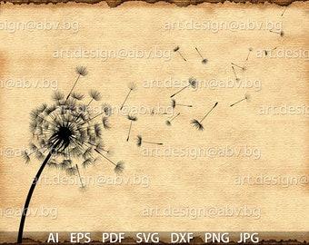 Vector Flower /Taraxacum/, dandelion, AI, PNG, pdf, eps, svg, dxf, jpg Download, Digital image, graphical, discount coupons