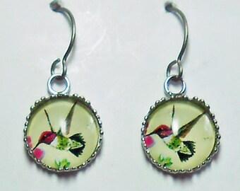 Hummingbird Earrings Titanium Hypoallergenic