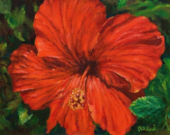 Red Hibiscus - High quality art print
