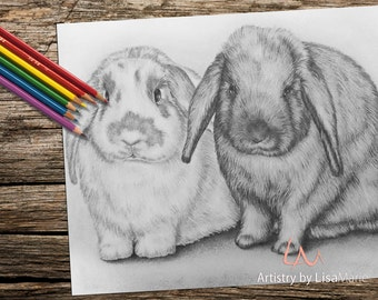 Coloring Book page, Coloring Pages, Instant download coloring, Bunny, adult coloring, coloring for adults, Printable coloring page, rabbit