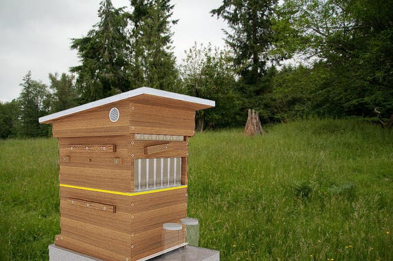diy flow beehive box plans langstroth 10 frame beekeeping. Black Bedroom Furniture Sets. Home Design Ideas