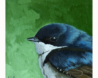 Baby TREE SWALLOW archival print from original animal BIRD oil painting
